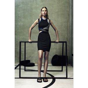 Alexander Wang for H&M Fitted Dress SZ 6